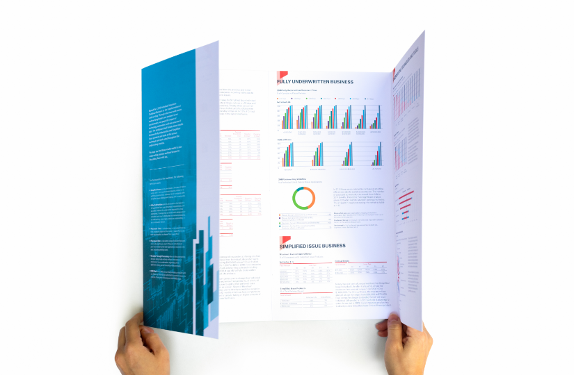 A person holding Munich Re Dashboard 2019 showing inside spread